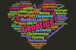 PTN Sinh học Phân tử - BM Di truyền