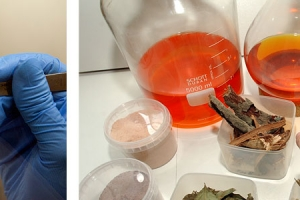 Trung tâm Nghiên cứu Hợp chất Tự nhiên có Hoạt tính Sinh học