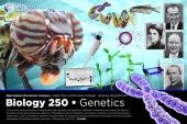 Giới thiệu chuyên ngành Di truyền - Sinh học Phân tử