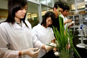 Đêm hội văn hóa khoa Sinh Học, ĐH KHTN năm 2014 - 004