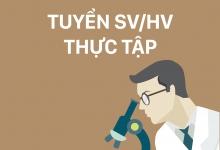 Thông báo tuyển Thực tập sinh - Bureau Veritas Việt Nam