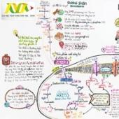[Infographic] Hô hấp tế bào