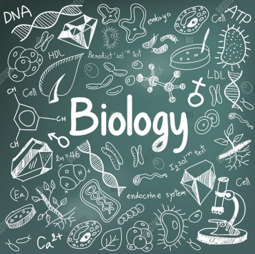 Bachelor of Science in Biology